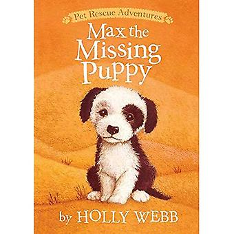 Max the Missing Puppy (Pet Rescue Adventures)