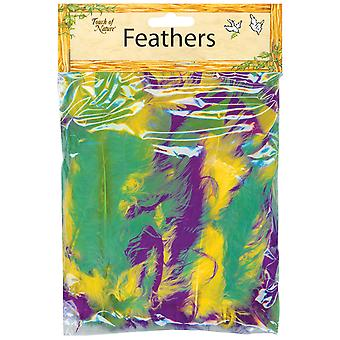 Flat Turkey Feathers 14g-Mardi Gras MD38031