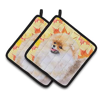 Carolines Treasures  BB9943PTHD Pomeranian Fall Pair of Pot Holders
