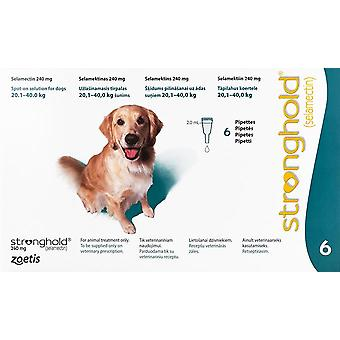 Stronghold Teal Dogs 44-88lbs (20-40kg) - 6 Pack