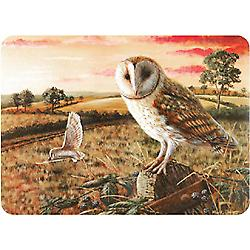 Premium Glass Worktop Protector Barny Owl Medium 3040BARN