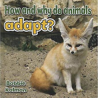 Passen Tiere sich wie und warum? (Alles über Tiere Nahaufnahme)