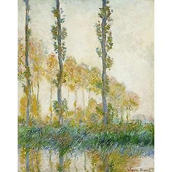 Die drei Bäume Herbst Poster Kunstdruck von Claude Monet