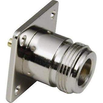 N connector Socket, vertical vertical 50 Ω BKL Electronic 404027 1 pc(s)
