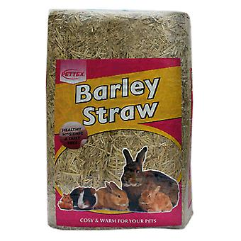 Straw Large (Pack of 6)