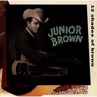 Junior Brown - 12 nuancer af brun [CD] USA importerer
