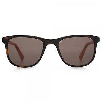 Hook LDN Rhapsody Sunglasses In Tortoiseshell On Orange