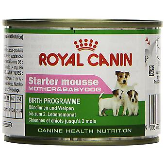 Royal Canin Dog Puppy food Starter Mousse 195 GR, 1 can
