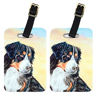 Carolines Treasures  7131BT Pair of 2 Bernese Mountain Dog Luggage Tags
