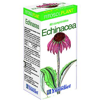 Fitosol Comp. Echinacea 80 Comp (kost, kosttilskud, Herbalist's)