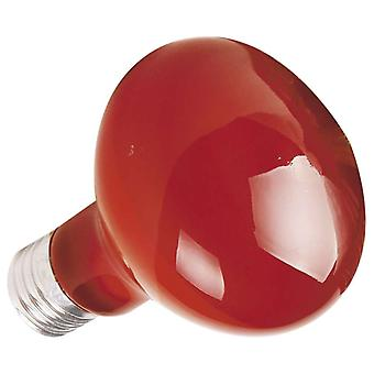 Ica Infrared bulb 50W (Reptiles , Lighting , Light Bulbs)