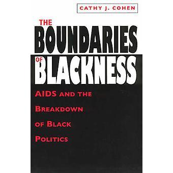 Los límites de la negritud - SIDA y la degradación de la política negra