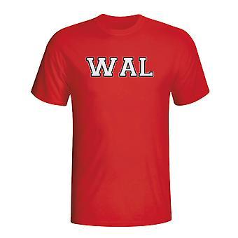 Camiseta de Iso de país de Gales (rojo) - niños
