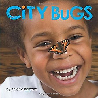 City Bugs [Board book]