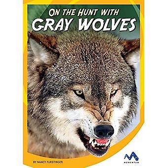 A caccia con lupi grigi (a caccia con animali predatori)