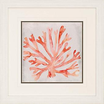 Watercolor coral iii coastal style by paragon