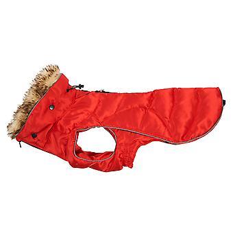 Buster Active Dog Coat High Risk Red Medium/large