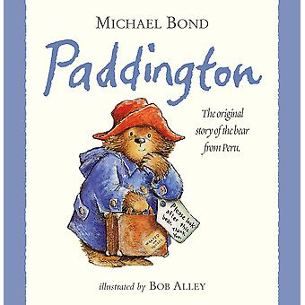 Rainbow Designs Paddington Bear Storybook