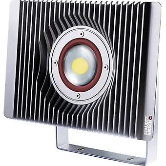 LED outdoor floodlight 60 W Neutral white Staudte-Hirsch SH-5.71