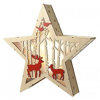 Light Up Star Decoration