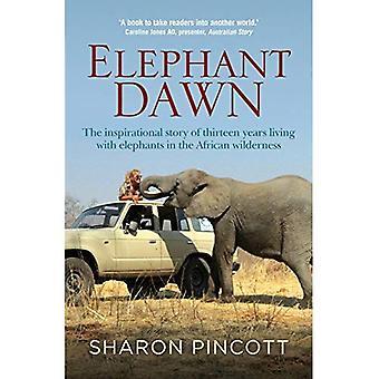 Olifant Dawn: Het inspirerende verhaal van dertien jaar leven met olifanten in de Afrikaanse wildernis (Paperback)