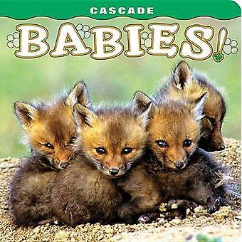 Cascade - Babies! by Tom Leeson - Pat Leeson - Wendy Shattil - Bob Roz