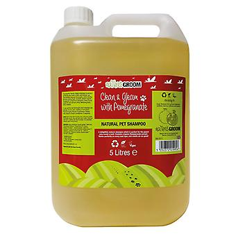 Natures Groom Clean & Gleam With Pomegranate Shampoo 5L