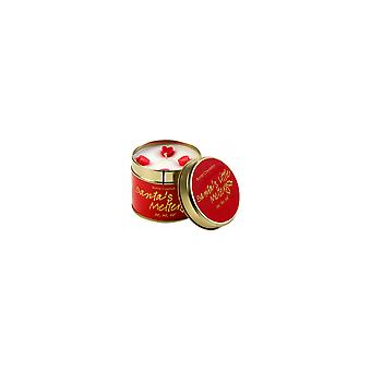 Bomb Cosmetics Candle-Santa ' s lille Melter