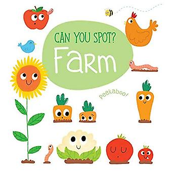 Look & Find Farm