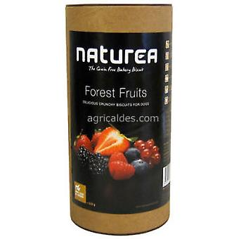 Naturea Biscuits Forest Fruits (Dogs , Treats , Hypoallergenic , Biscuits)