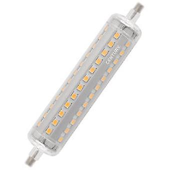 Century LED Lamp R7S Linear 8 W 920 lm 3000 K (Home , Lighting , Light bulbs and pipes)