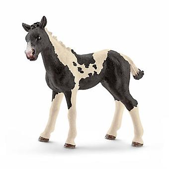Schleich Pinto foal (Toys , Dolls And Accesories , Miniature Toys , Animals)