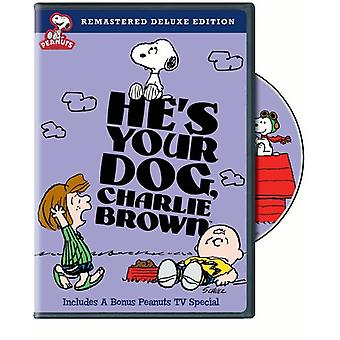 Peanuts - He's Your Dog Charlie Brown [DVD] USA import