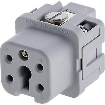 Amphenol C146 10B004 002 4 Socket Insert