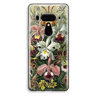 HTC U12+ Transparent Case - Haeckel Orchidae