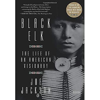 Black Elk: The Life of an� American Visionary
