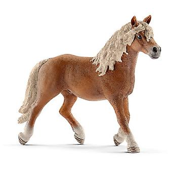 Schleich Semental Haflinger (Toys , Dolls And Accesories , Miniature Toys , Animals)