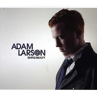Adam Larson - schlichte Schönheit [CD] USA import
