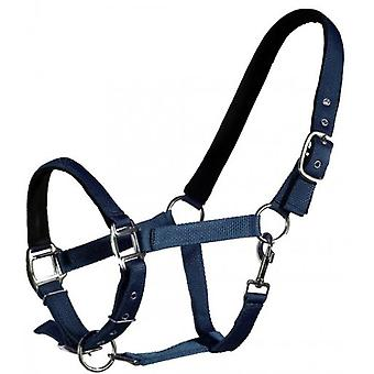 QHP Straight Blue Pony Bridle (Horses , Pony world , Bridles and reins)