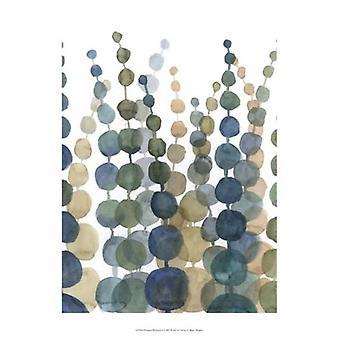 Pompom Botanical II Poster Print by Megan Meagher (13 x 19)