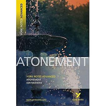 York Notes on  Atonement  (York Notes Advanced)