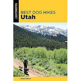 Best Dog Hikes Utah (Best Dog Hikes)