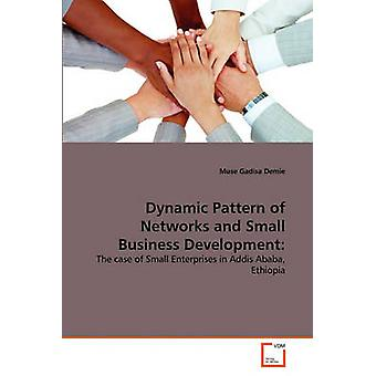 Dynamic Pattern of Networks and Small Business Development by Demie & Muse Gadisa