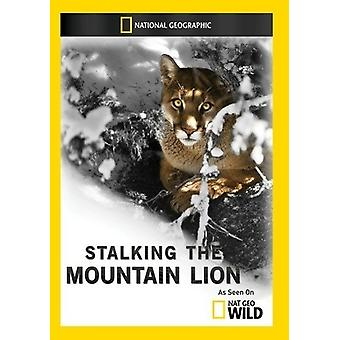 Acechando a la importación de Estados Unidos Mountain Lion [DVD]
