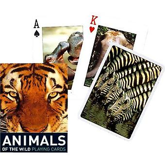 Animals Of The Wild Set Of Playing Cards