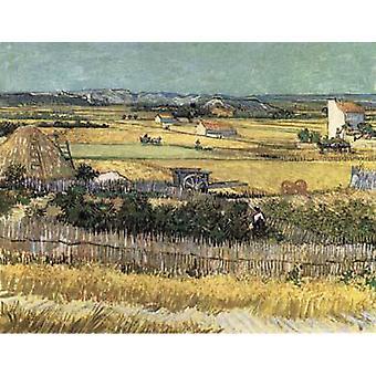 Harvest at La Crau, with Montmajour in the Background, Vincent Van Gogh, 64x80cm