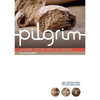 Pilgrim - Book 6  by Steven Croft - Stephen Cottrell - Paula Gooder -