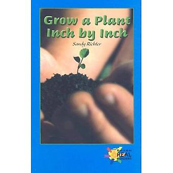Grow a Plant Inch by Inch (Real Readers Series: Level Blue)