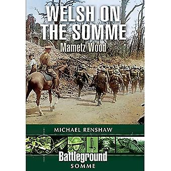 Welsh auf der Somme: Mametz Holz (Schlachtfeld)