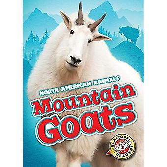 Mountain Goats (North American Animals)